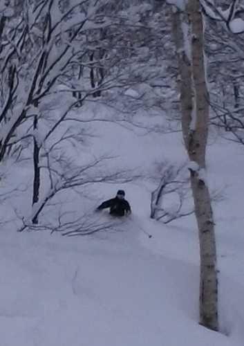 平日スキーヤーさん